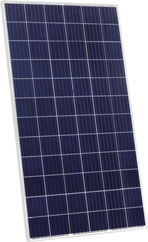 Módulos Jinko Solar Poly